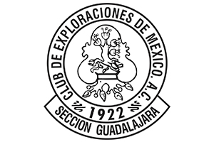 CEMAC GDL